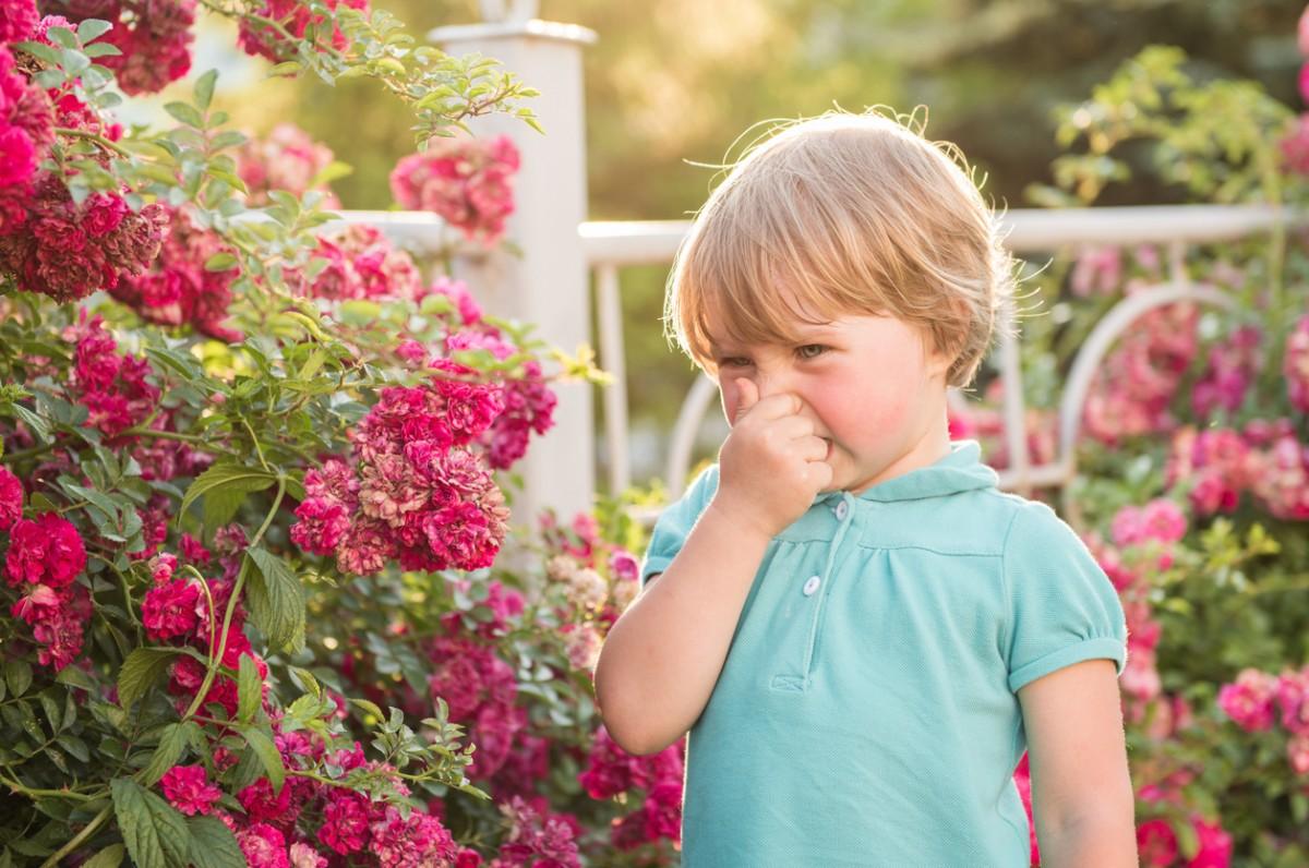 Аллергические реакции у детей фото