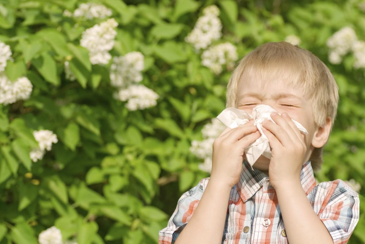 Алергия в картинки